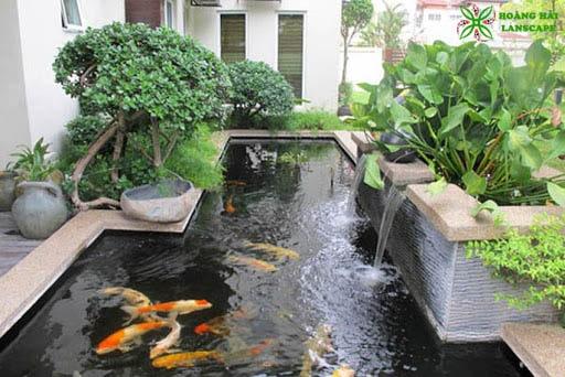 Hồ cá koi đẹp quận Tân Bình