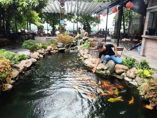 Hồ cá koi quán cafe 6