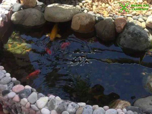 Hồ cá koi sân thượng mini