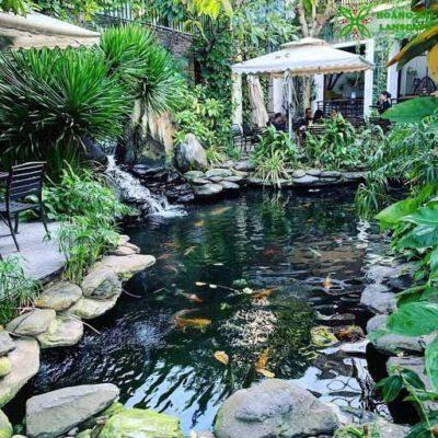 Hồ cá koi sân vườn mẫu 2