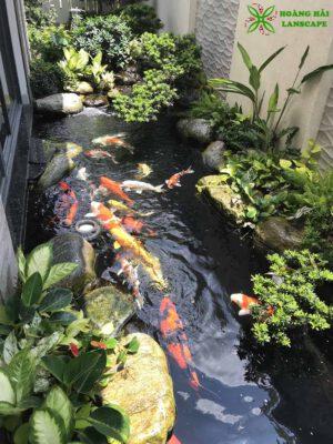 Hồ cá koi sân vườn mẫu 7