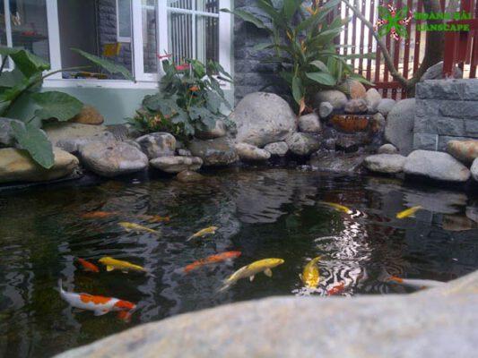 Thiết kế thi công hồ cá koi quận Bình Tân