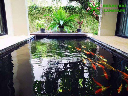 Thiết kế thi công hồ cá koi trong nhà
