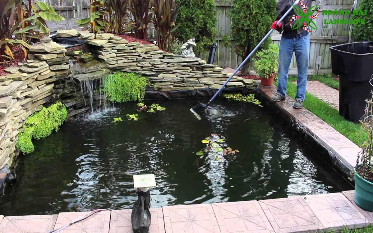 Vệ sinh - bảo trì hồ cá koi