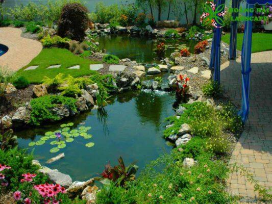 thiết kế thi công hồ cá koi sân vườn