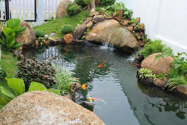 Hồ cá koi tiểu cảnh sân vườn