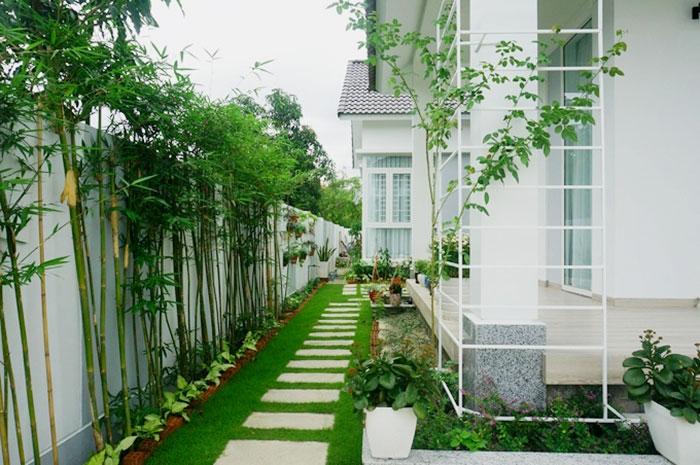 Thiết kế sân vườn bên hông nhà 02