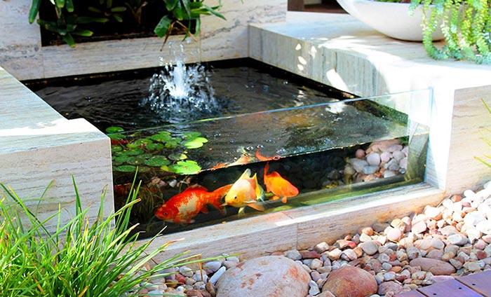Tiểu cảnh hồ cá trong nhà 07