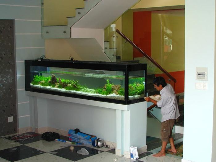 Tiểu cảnh hồ cá trong nhà 09