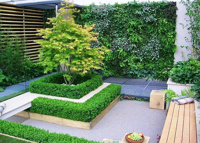 Tổng hợp mẫu sân vườn đẹp 06