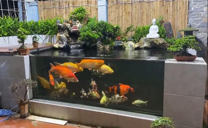 Hồ cá koi mini bằng kính - Hình 5