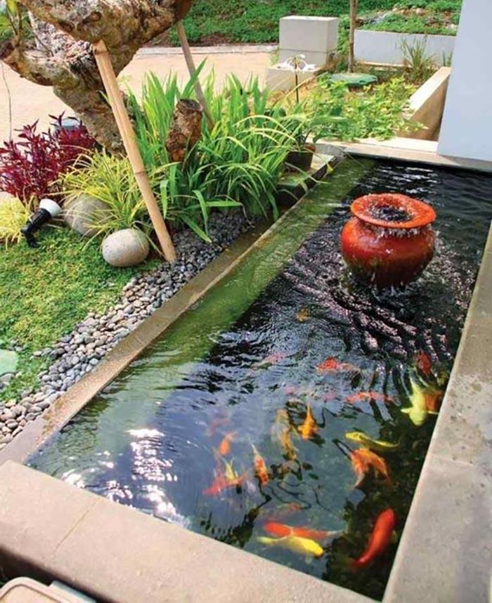 Hồ cá koi mini với thiết kế đơn giản - Hình 8