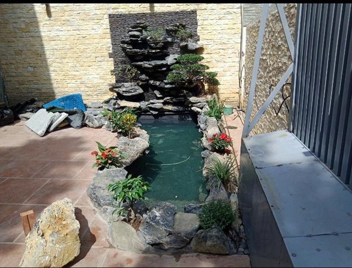 Hồ cá koi mini trong sân vườn - Hình 8