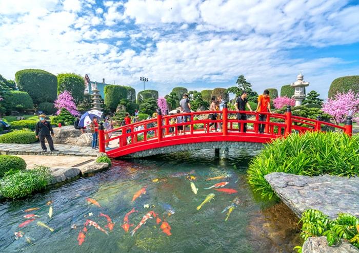 Hồ cá koi Rin Rin Park - H3