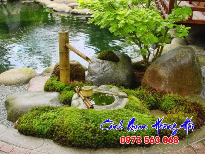 Cây trồng sân vườn Nhật Bản