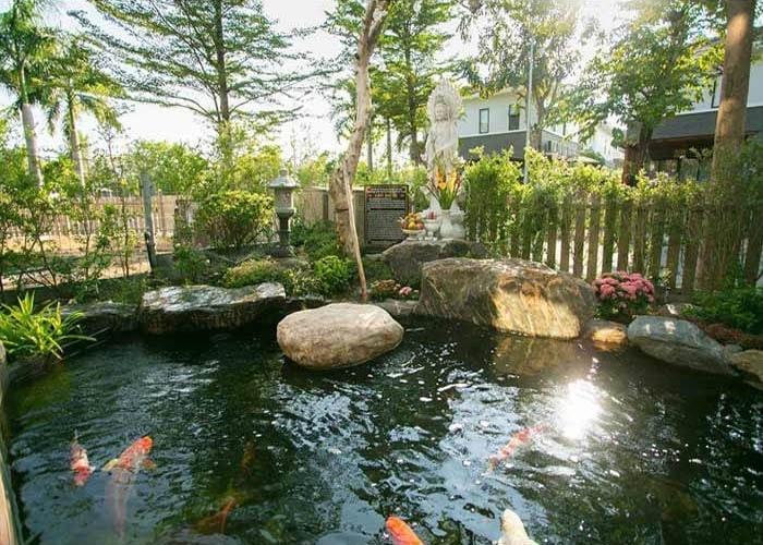 Hồ cá koi biệt thự ca sĩ - diễn viên Nhật Kim Anh H1