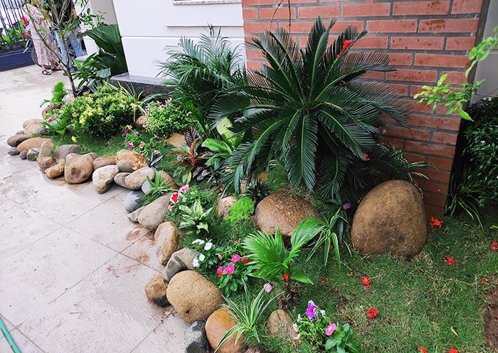 Sử dụng cây trồng tiểu cảnh sân vườn phù hợp