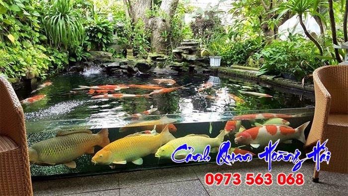 Hồ cá koi bằng kính đẹp tại Tiền Giang